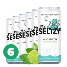 6er Set Limette & Minze   Spritziger Apfelwein   Zuckerfreier Hard Seltzer