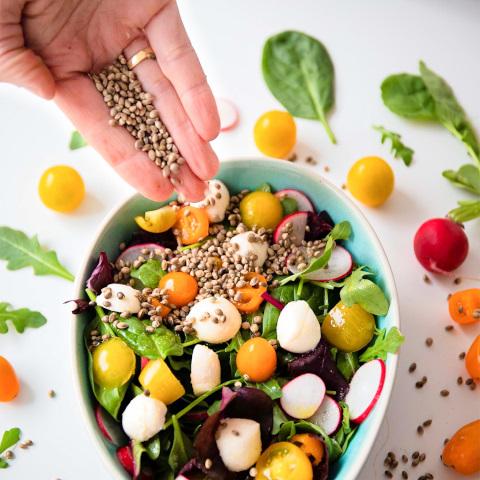 knabber hanf low carb keto lowcarb glutenfrei vegan chips ersatz salat