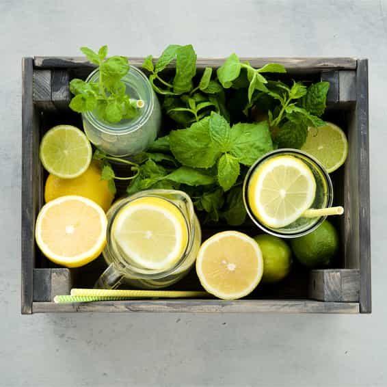 Lemonana, das beste Low-Carb Erfrischungsgetränk